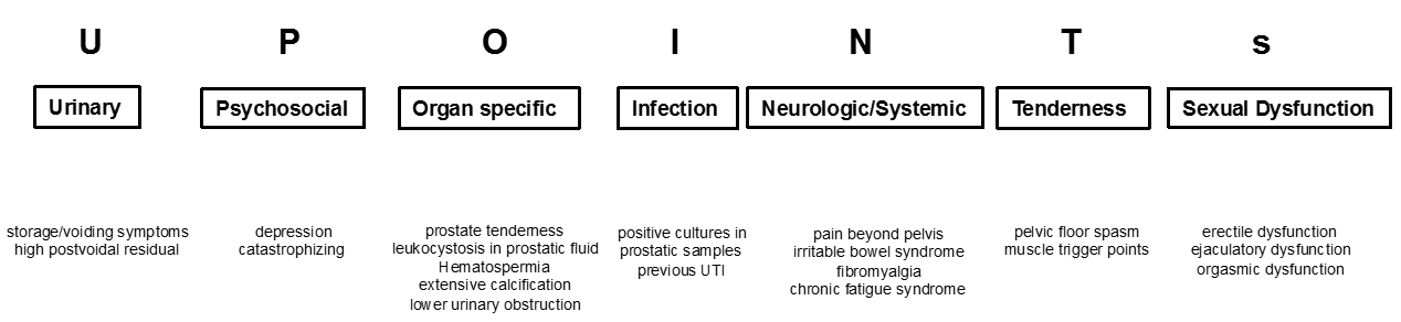 Figure 1: Phenotypic classification according to UPOINRs (adapted with permission from Elsevier).